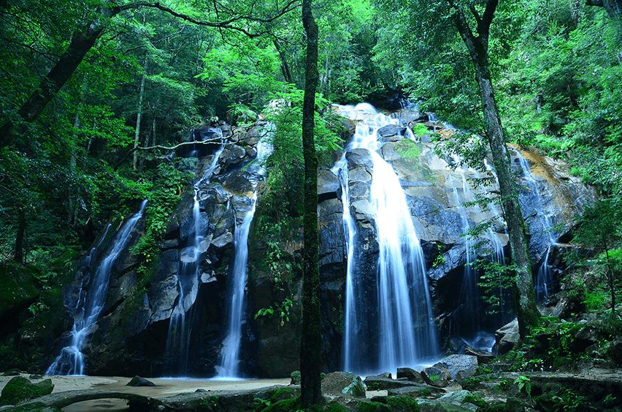 CSR決意イメージ 日本100名滝「金引きの滝」