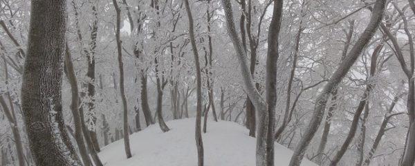 しんと静まり返った冬山